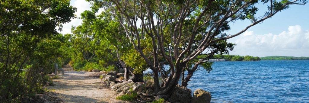 Blog  - Miami FL - Biscayne National Park - Rudy Umans (Shutterstock 418889632) 1024x341-min